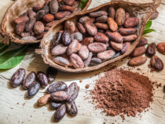 Comment cuisiner le cacao cru ?